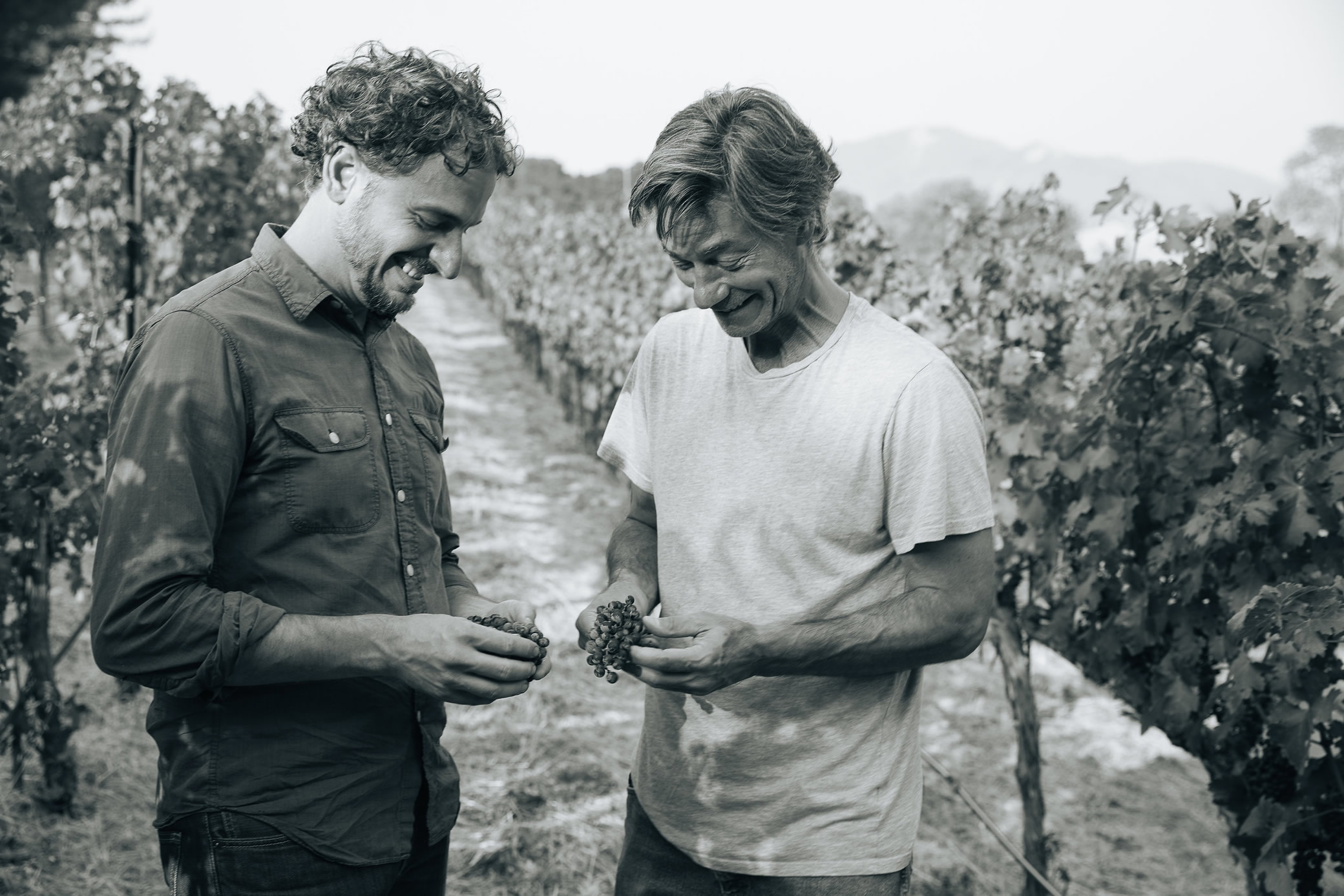 Diego Roig And John Boich Inspecting Grapes